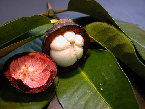 Мангостан- фрукт Вьетнама