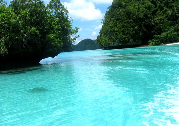 Давинг в Тихом океане