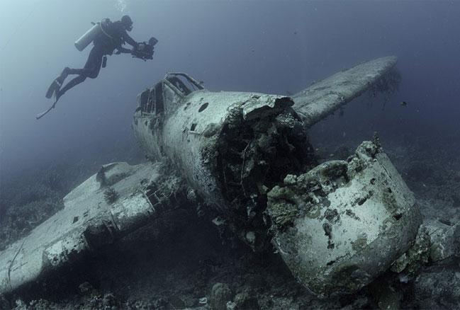 Подводный мир Палау