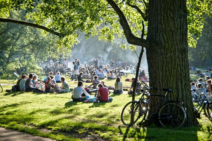 Трава в Амстердаме
