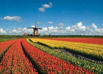 10 интересных фактов о Голландии