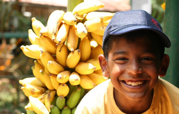 Индийские бананы