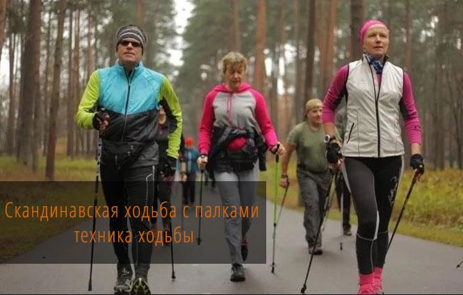 Техника скандинавской ходьбы с палками. Польза, вред и типичные ошибки.