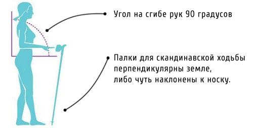 Схема правильного подбора длины палок