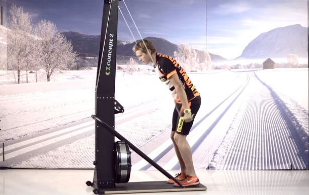 тренажер лыжника