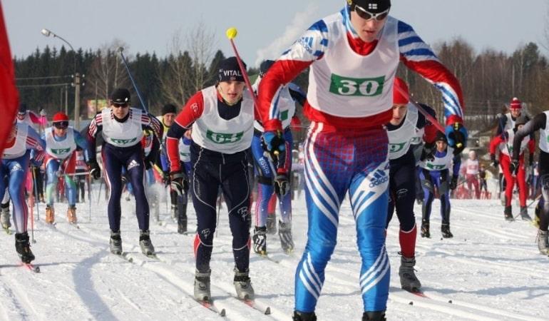 Бег лыжников